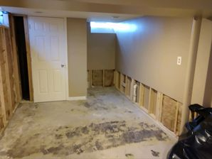 Mold Remediation in Clinton Township, MI (4)